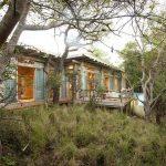 A luxury suite at Kapama Karula set amongst trees'