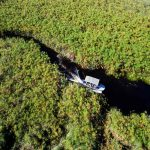 An aerial view of a boat moving through the channels of the Okavango Delta