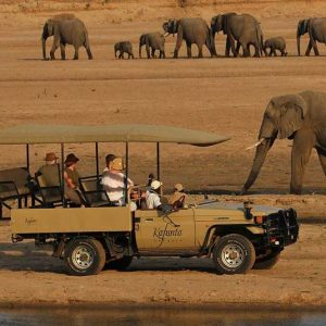 _Luangwa-elephant-safari-drive