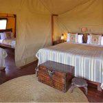 Ngorongoro Crater, Ngorongoro Crater and Serengeti – 10 days, African Safari Experts, African Safari Experts