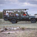 Encounter Mara wildlife experiences