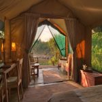 Rekero guest tent looking out to the African bush