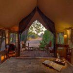 Jongomero guest tent interior