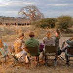 Jongomero guests sitting watching elephants in the distance