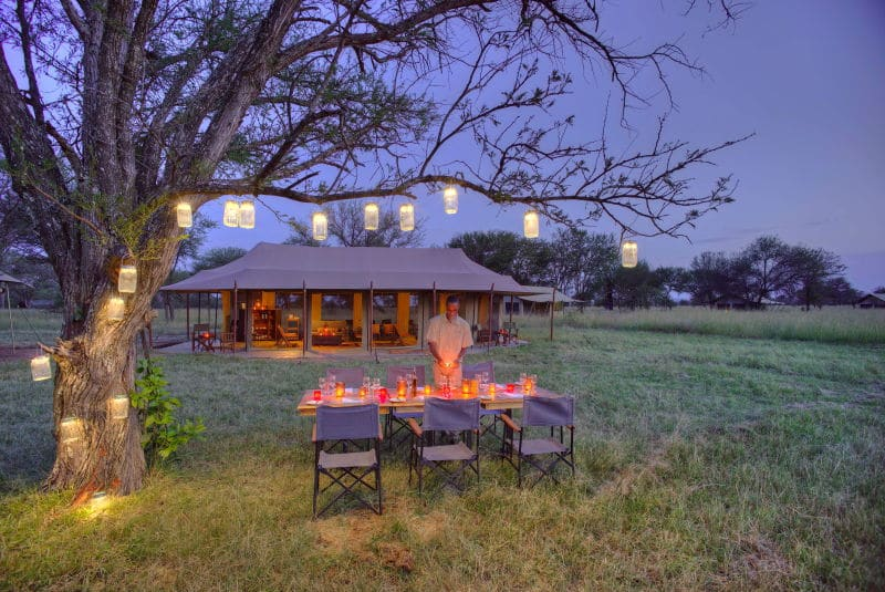 Best Migration Lodges