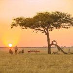 Ubuntu Camp plains of the serengeti with guest enjoying sunset drinks under a tree