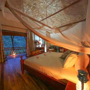 Mahogany Springs honeymoon suite with double bed looking out over the forest