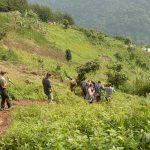 Peiople walking down a mountain slope on way to gorilla trekking